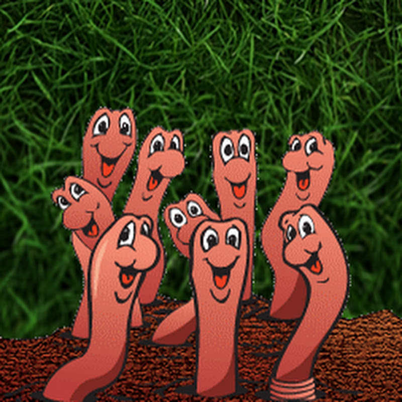 Смешная картинка червя, вдв никто кроме